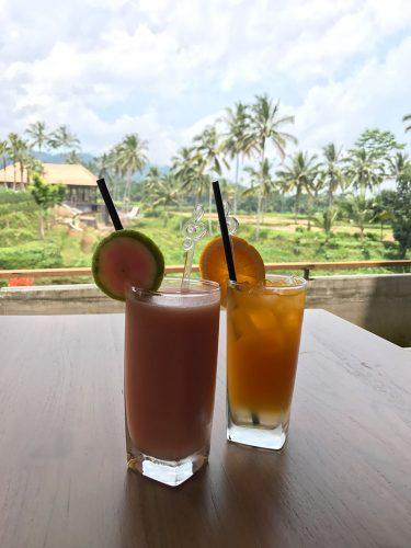 Secret Garden Village Bedugul juices