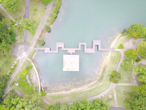 MacRitchie Reservoir Park Top View
