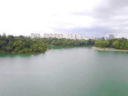 MacRitchie Reservoir Park: Skyline of Singapore's inner suburbs from the reservoir.
